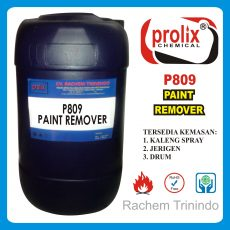 P 728  Paint Remover Cat Penghilang Pembersih Penghapus Pengelupas